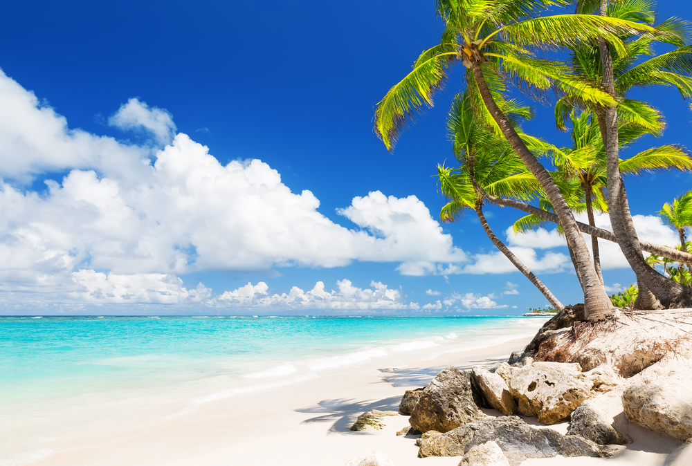 Attractions In The Dominican Republic Punta Cana